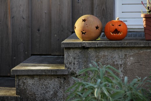 Halloween - zdroj sxc.hu